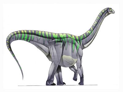 Gigadino Antarctosaurus