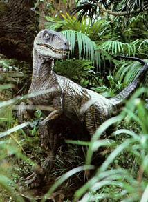 voici le vlociraptor de jurassic park