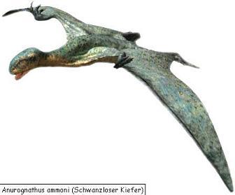 Gigadino anurognathus - Jeux de dinosaure volant ...