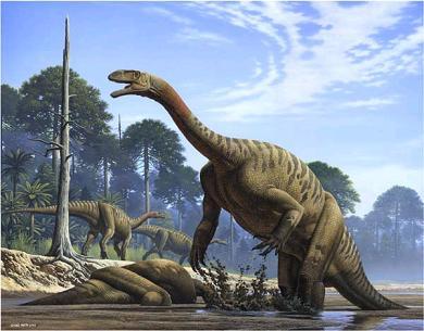 Sur la terre des dinosaures : L Ère des géants